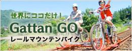 世界にココだけ!Gattan GOレールマウンテンバイク